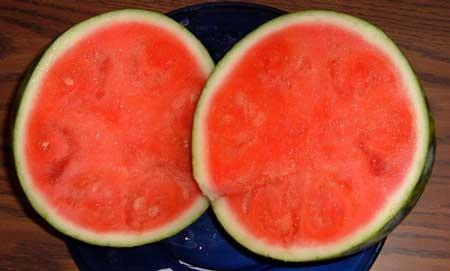 img/daneshnameh_up/c/cc/Watermelon1.jpg